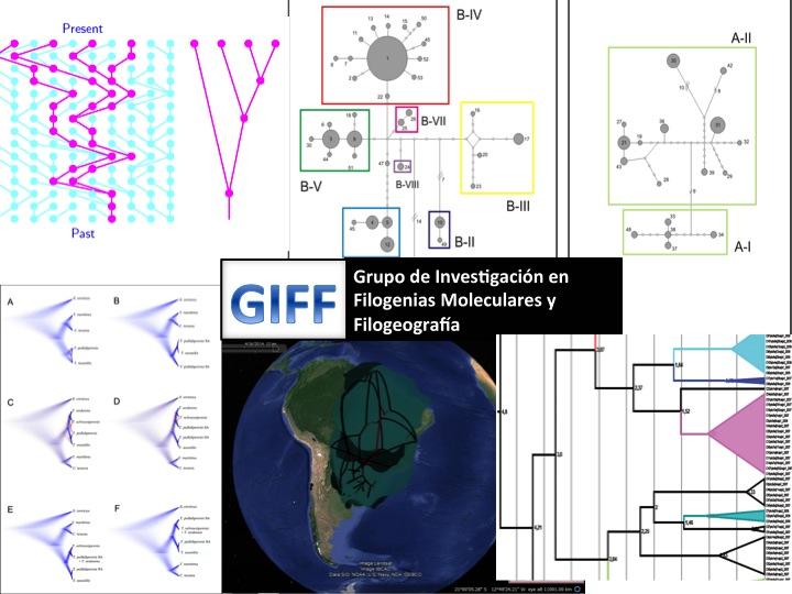Grupo de Investigación en Filogenias y Filogeografía